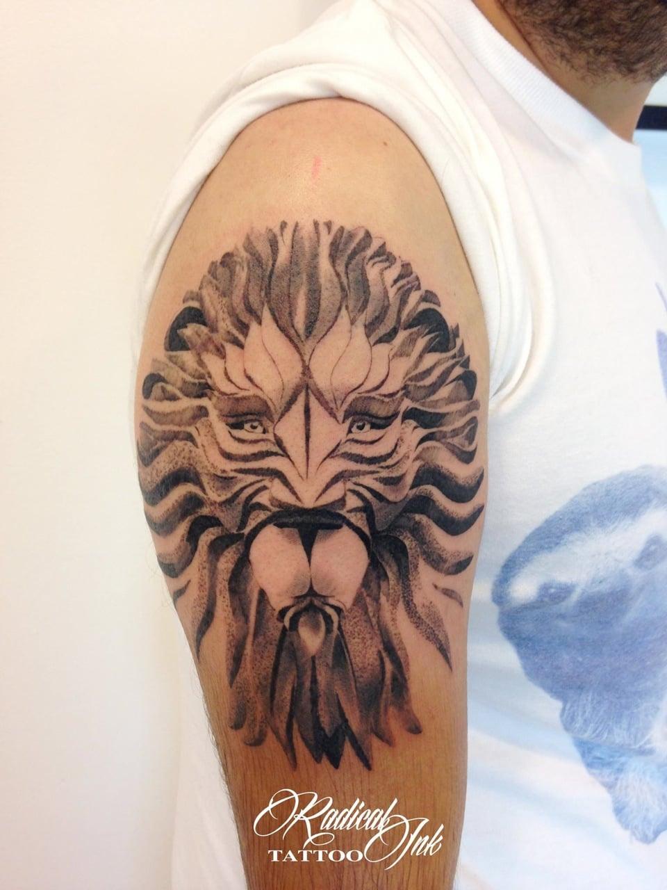 andrei chirita - lion